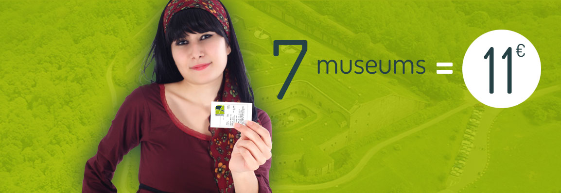 A single ticket to visit the museums