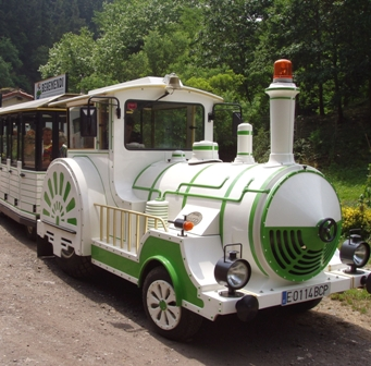 Guided tours Green Train of Arditurri